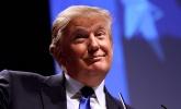 Trigger, la app que alerta a los inversores de los tuits de Donald Trump